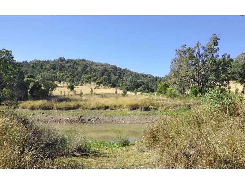 Clowes Rd, Currabubula, NSW 2342