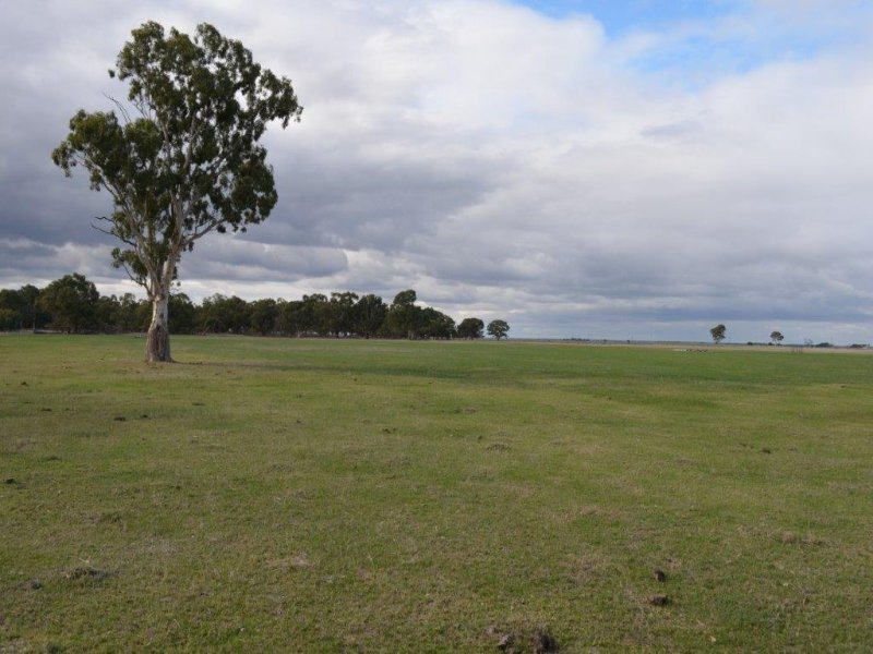 Lot 277 & 306 Skinner Road, Penola, SA 5277