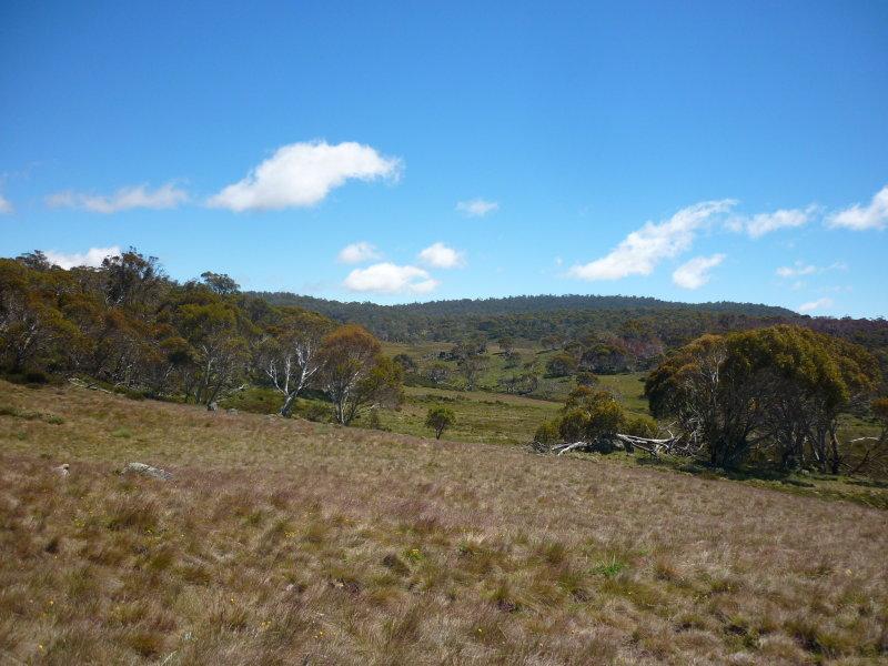 Snowy Plains, Eucumbene, NSW 2628