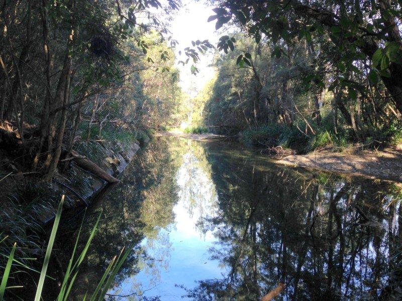 54 Pappinbarra Road Right Arm, Upper Pappinbarra, NSW 2446