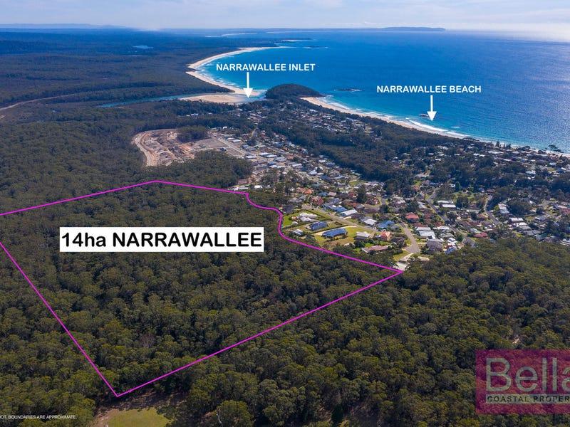 Lot 29, Seascape Close, Narrawallee, NSW 2539