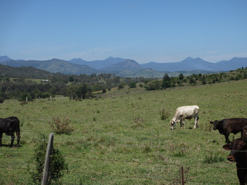 Milford Middle Road, Milford, Qld 4310