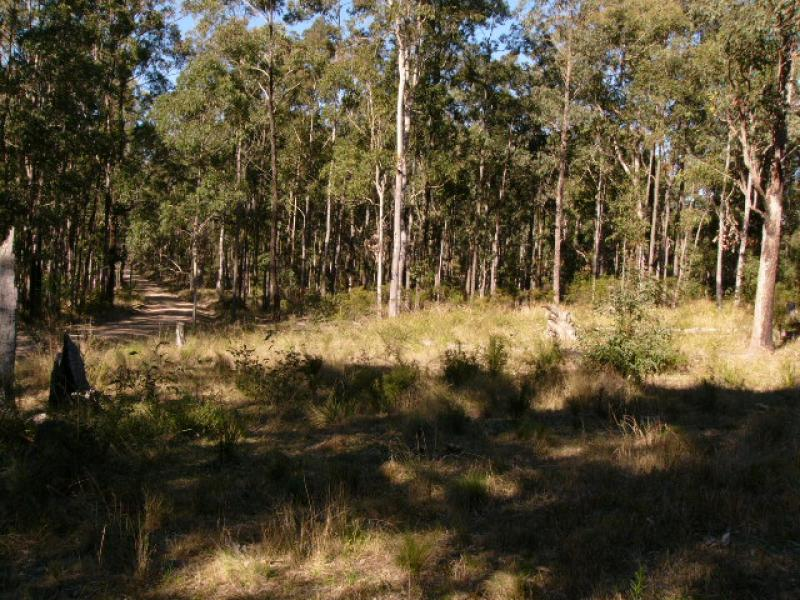 Lot 2 Spring Creek Road, Wards River, NSW 2422