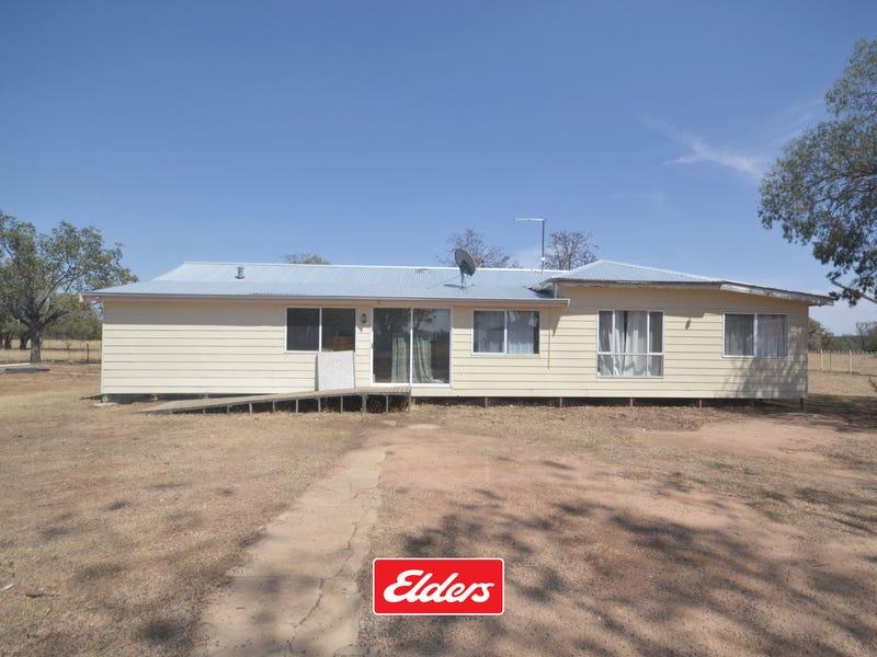8066 YETMAN ROAD, Wallangra, NSW 2360
