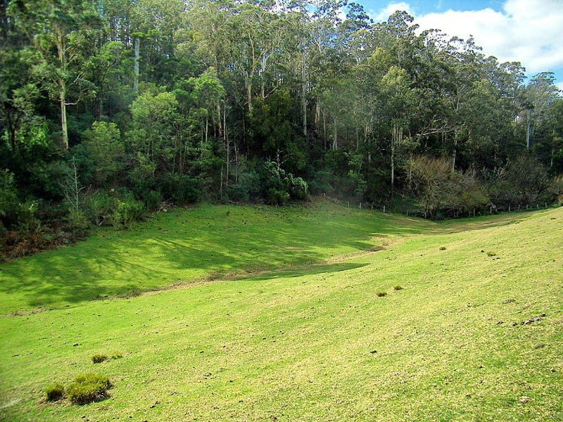 46 The Snake Track, Kiah, NSW 2551