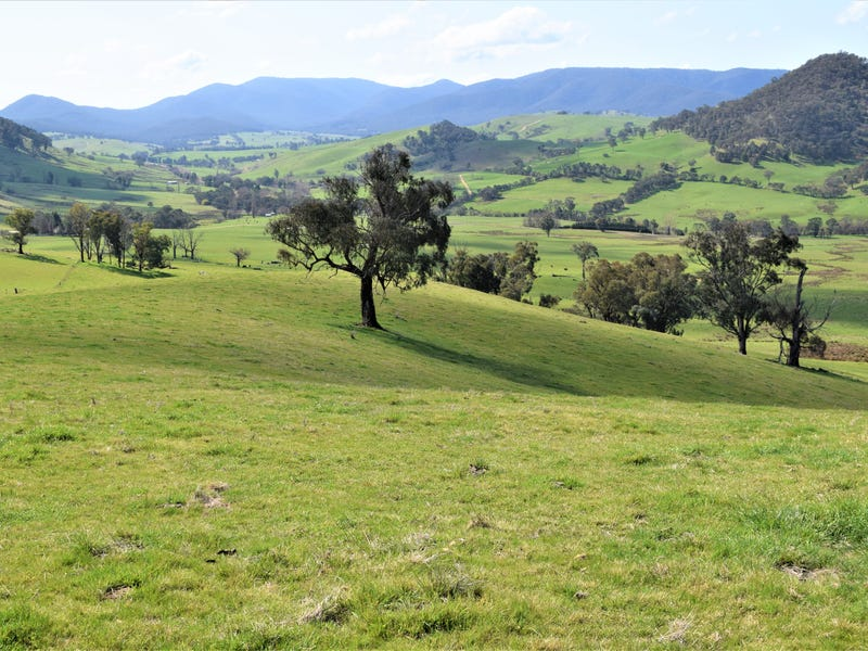 3973 Murray Valley Highway, Berringama, Vic 3691