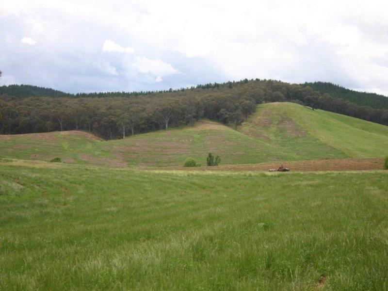 Bob's Creek Road, Carabost, NSW 2650