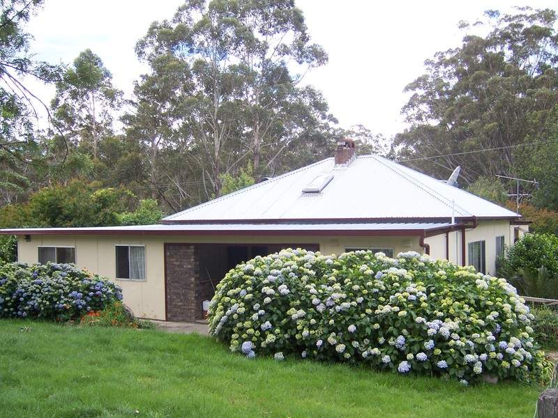 D3380 Princes Highway, Jerrawangala, NSW 2540