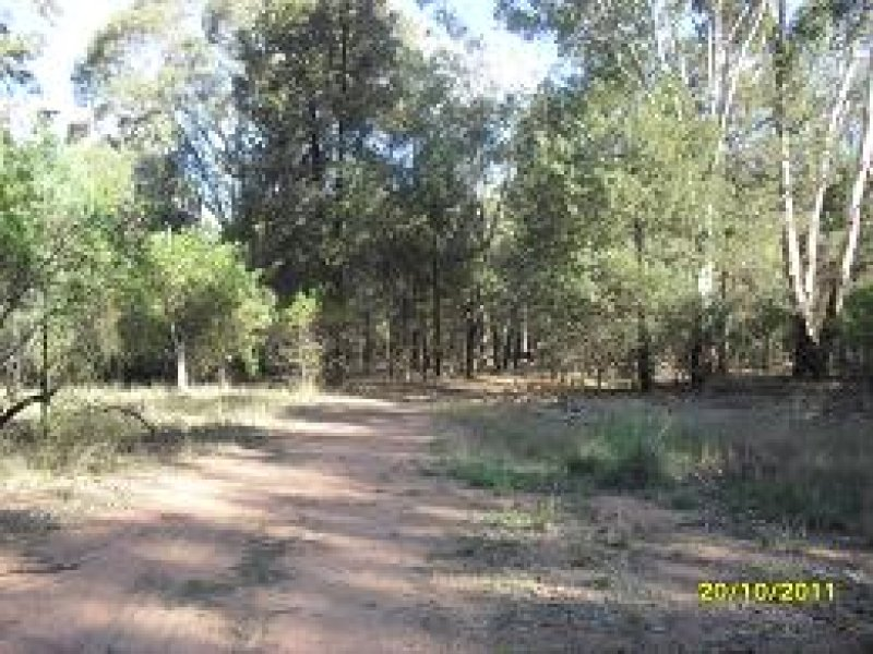 Lot 42, Warren Road, Gilgandra, NSW 2827