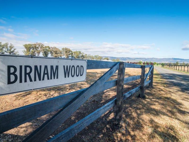 "262 Turanville Rd, ""Birnam Wood"", Scone, NSW 2337"