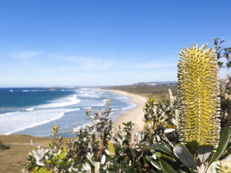 Seacrest Boulevard, Sandy Beach, NSW 2456