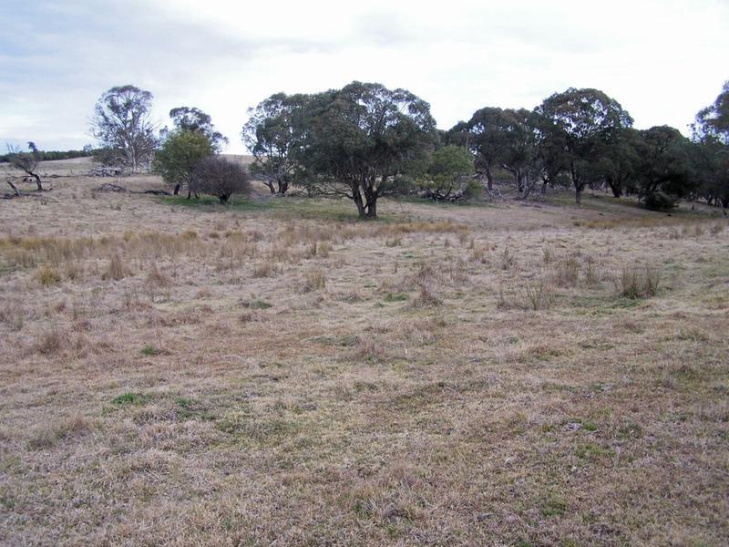 Lot 4 Woodhouselee  Road, Laggan, NSW 2583