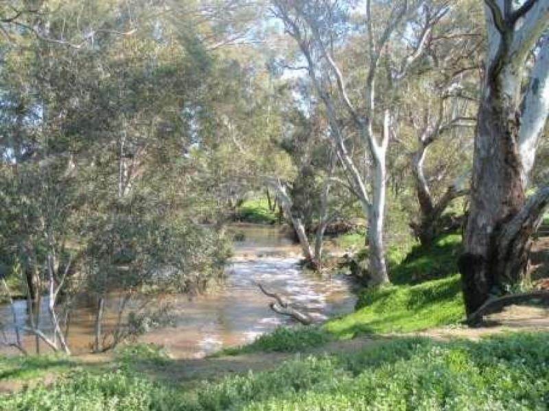 "175 ""Lot 1"" Seymour Pyalong Road, Seymour, Vic 3660"
