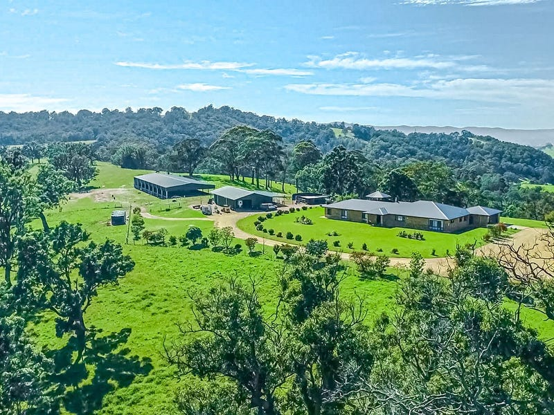 568 Coopers Guly Road, Coopers Gully, NSW 2550