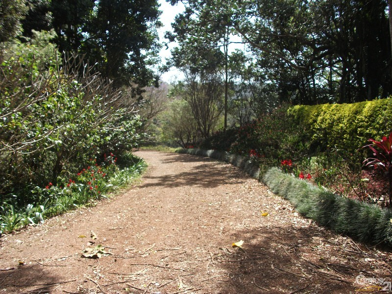 313 Marom Creek Rd, Meerschaum Vale, NSW 2477