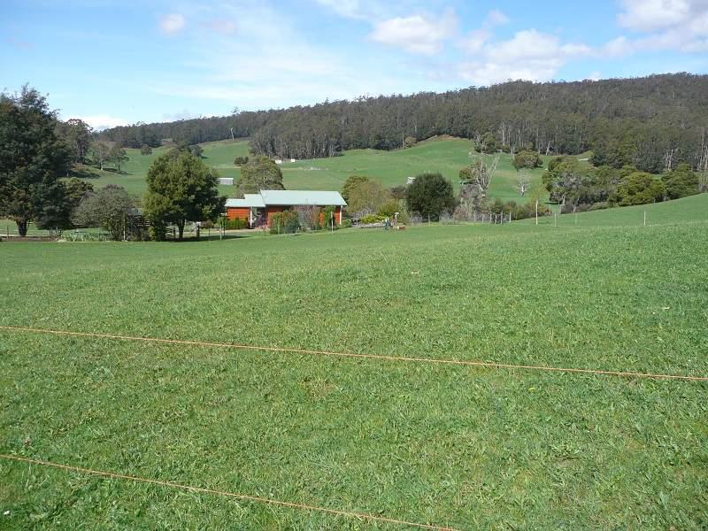 435 Liena Road, Mole Creek, Tas 7304