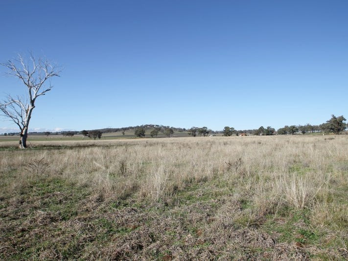130 Ridout Lane, Gulgong, NSW 2852