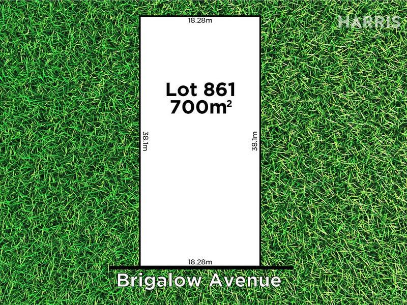 11 Brigalow Avenue, Seacombe Gardens, SA 5047
