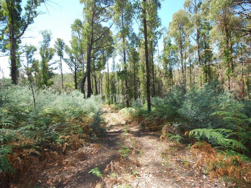Lot (1) Pearces Road, Strickland, Tas 7140