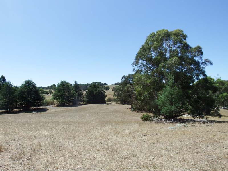 40  Armstong Ave, Strathbogie, Vic 3666