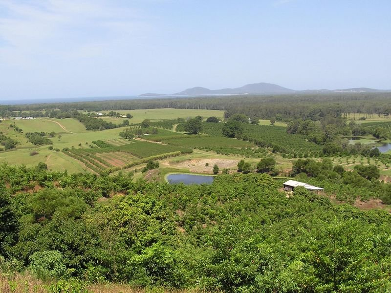 Lot 132 Stuarts Point Road, Yarrahapinni, NSW 2441