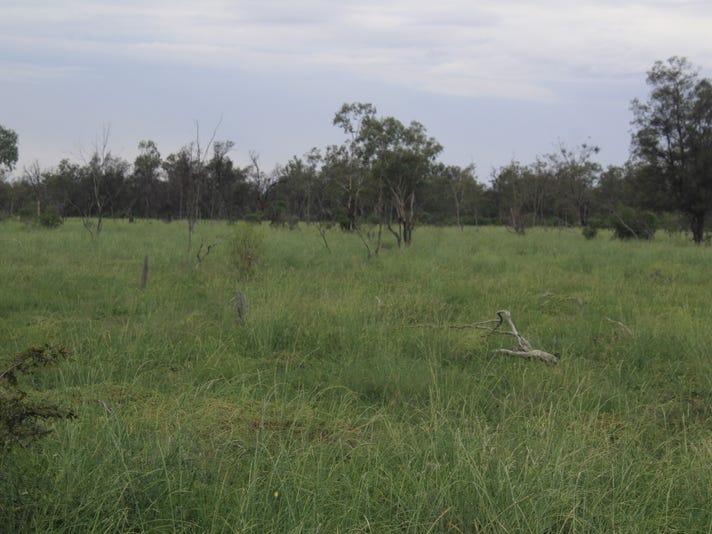 "'' Goodrums"", Mungindi, NSW 2406"