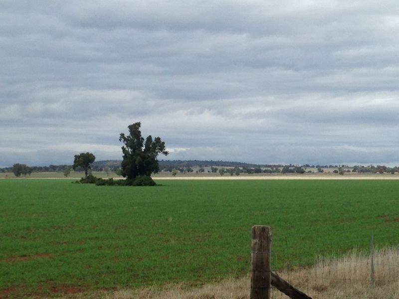 374 Ganantagi Rd, Yarrabandai, NSW 2875