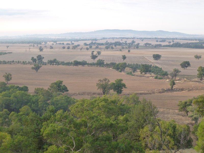 Longerenong Lookout Road, Walla Walla, NSW 2659
