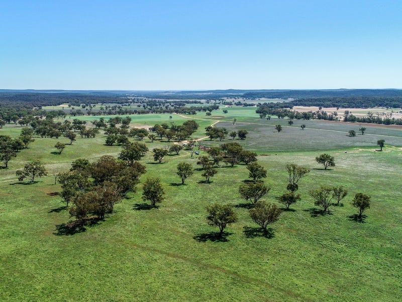 1799 Digilah Road, Dunedoo, NSW 2844