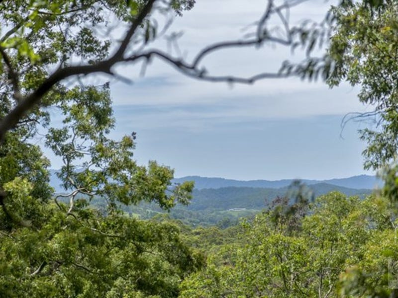 Lot 239, Smiths Creek Road, Stokers Siding, NSW 2484