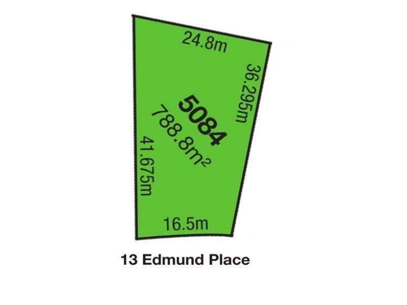 13 Edmund Place, Cecil Hills, NSW 2171