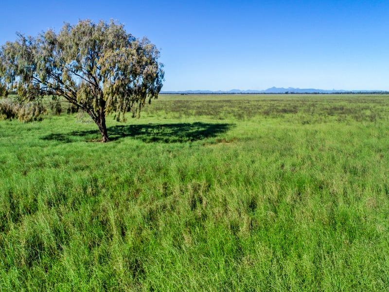 1048 Box Ridge Road, Gulargambone, NSW 2828