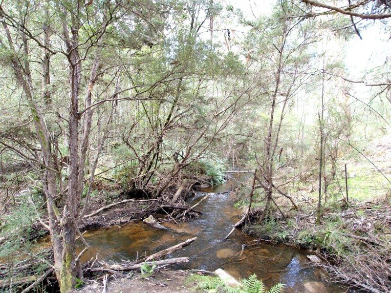 73 Reefton Drive, McMahons Creek, Vic 3799