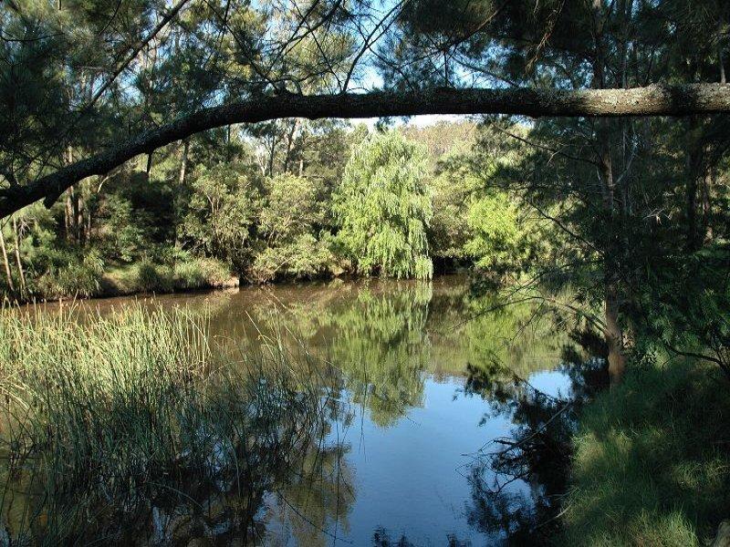 10, Paynes Crossing Rd, Paynes Crossing, NSW 2325