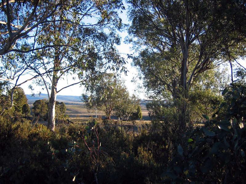 12 Bronte Estate Road, Bronte Park, Tas 7140