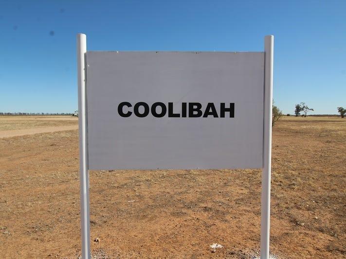 Coolibah, Mungindi, NSW 2406