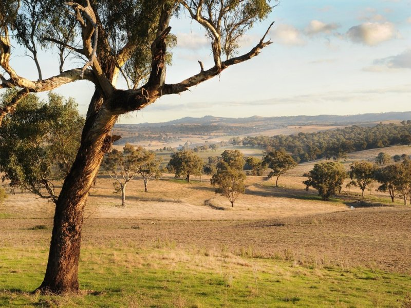 Address available on request, Evans Plains, NSW 2795