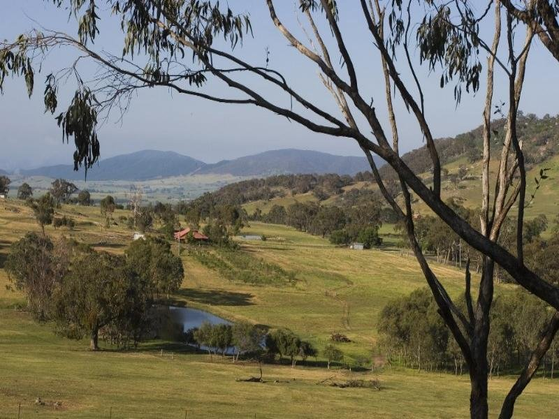 496 Tunnel Gap Road, Myrtleford, Vic 3737