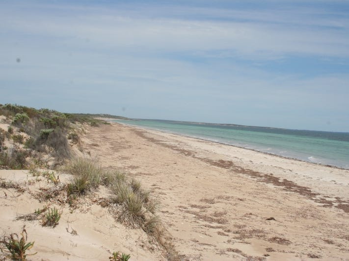 Lot 52 Flinders Highway Perlubie, Streaky Bay, SA 5680