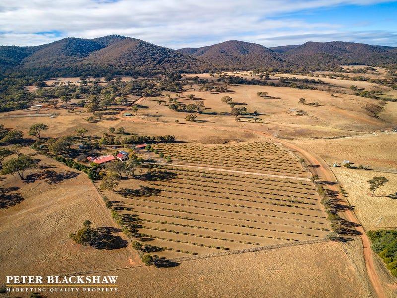 103 Mt Colinton Road, Colinton, NSW 2626