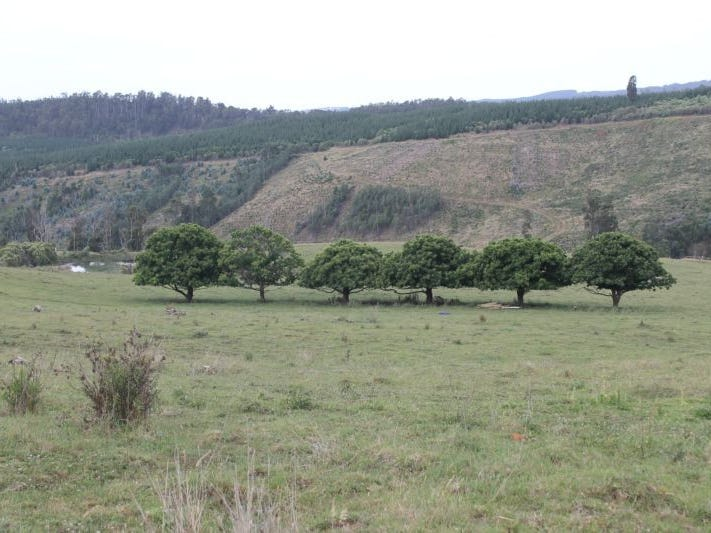 Lot 2 Koegels Road, Callignee, Vic 3844