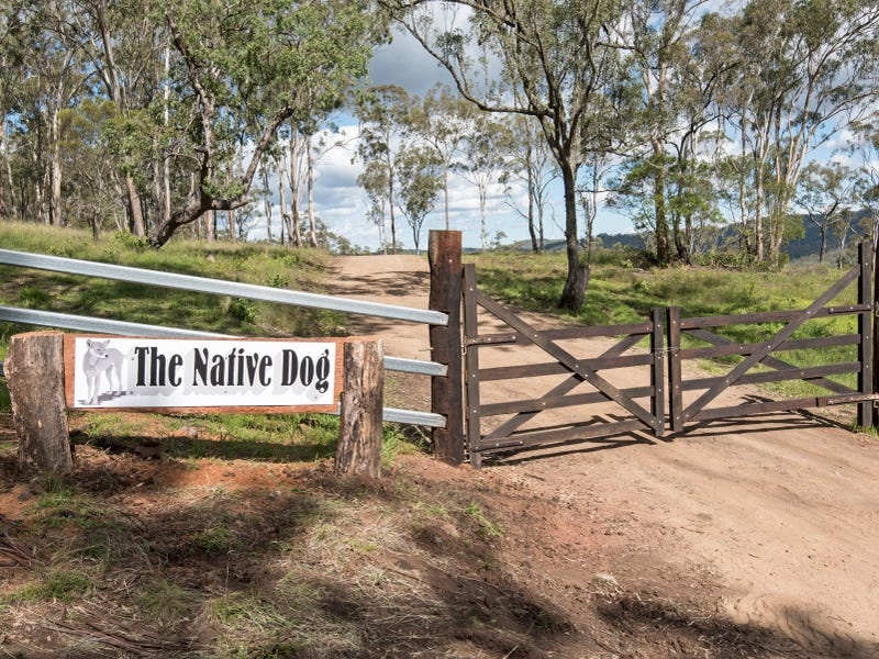 'Native Dog' Mount Neale Road, Ramsay, Qld 4358
