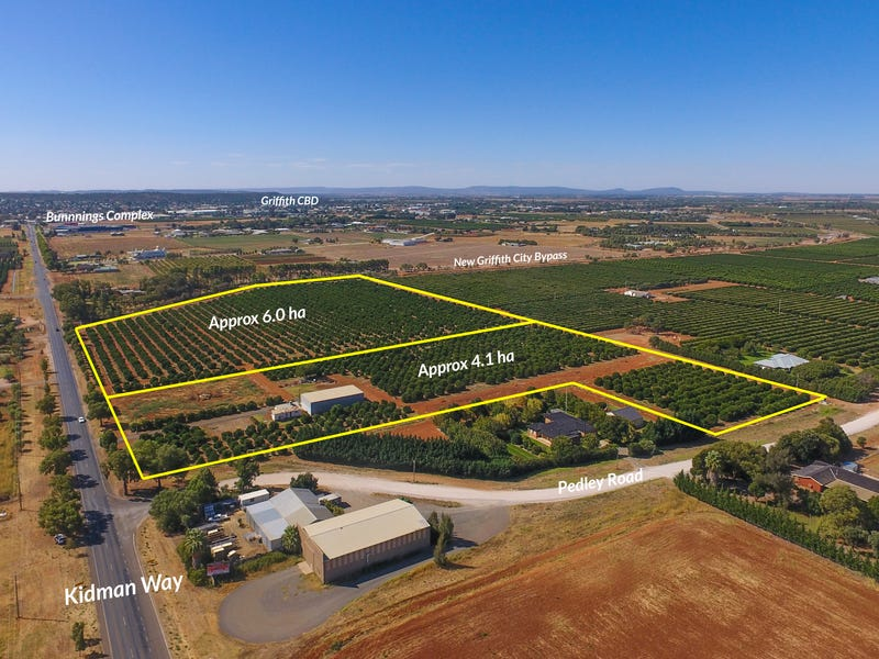 Part 467 Pedley Road, Griffith, NSW 2680 - Horticulture for
