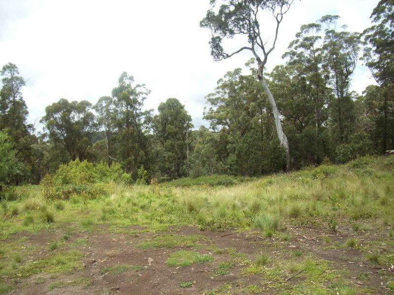 Address available on request, Sassafras, NSW 2622