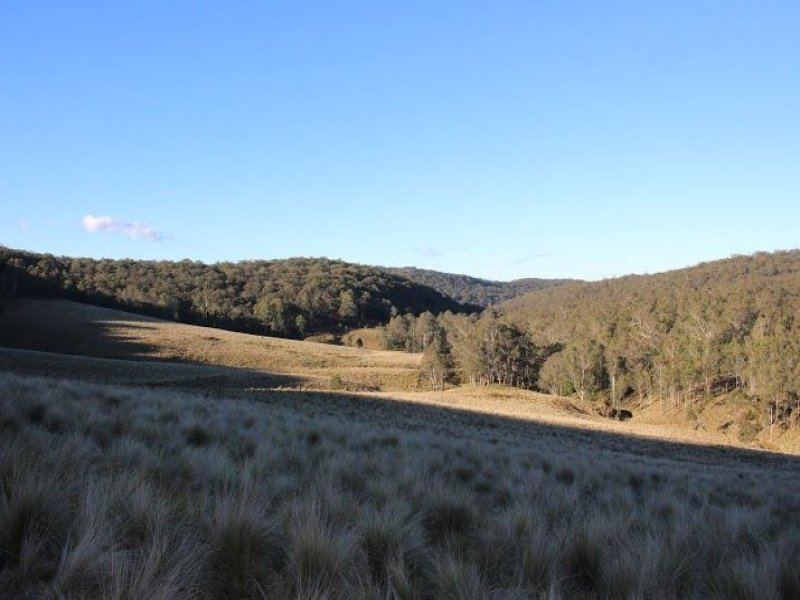 Lot 1 and 2 Putty Valley Road (Condon Clear, Putty, NSW 2330