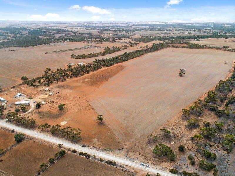 110 Frahns Farm Road, Monarto, SA 5254