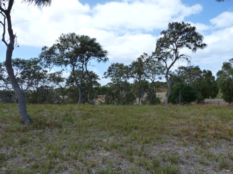 Lot 66 Tranquil Drive, Windabout, WA 6450