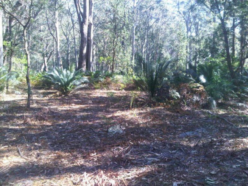5 Fern Drive, South Durras, NSW 2536