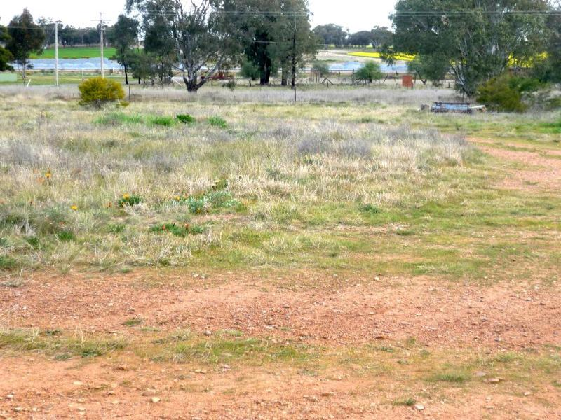 Address available on request, Mirrool, NSW 2665
