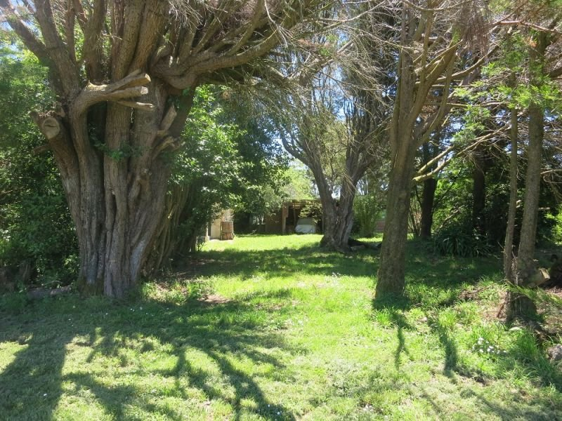 12 Pound Road, Beech Forest, Vic 3237